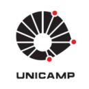 unicamp-1